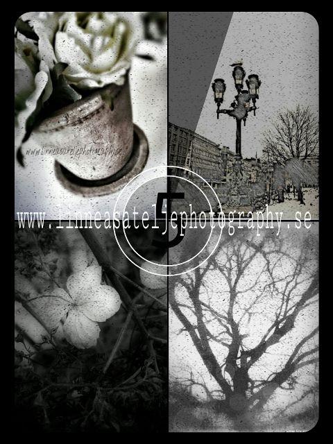 photography vintage retro black & white old photo collage
