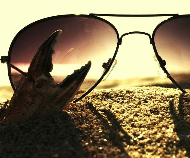 photo of glasses