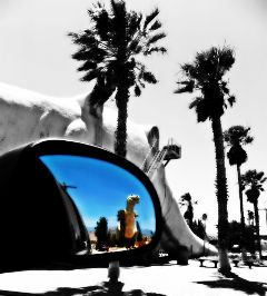 photography color splash black & white cabazon dinosaurs