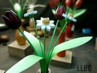 photography flower art