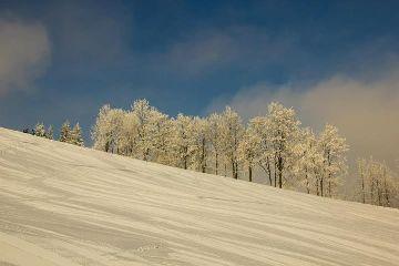 winter zima polska poland nature