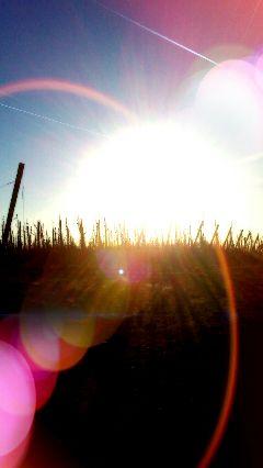 sunset sun spring bemelen