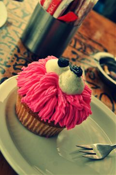 muffin charlys backery southafrica travel africa