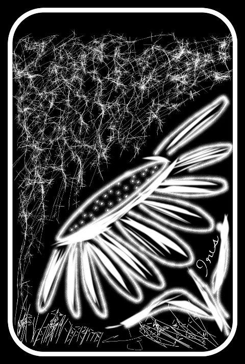 pencil art black & white