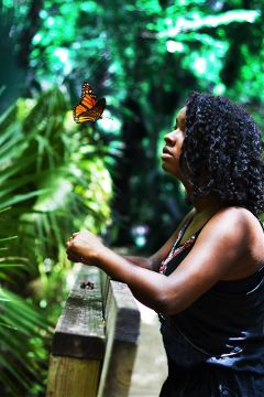 nature self portrait color butterfly summer